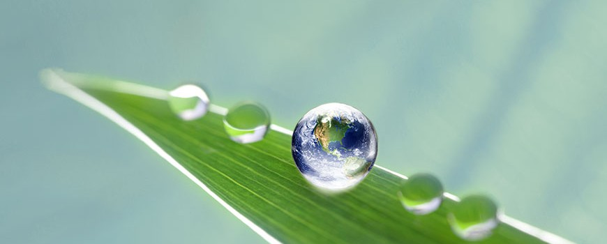 Global water, paper and process treatment